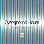 Overground house V